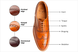 Shoe anatomy infographic